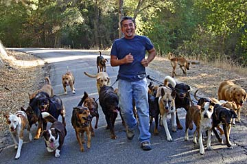 How Can I Get On The Dog Whisperer Show