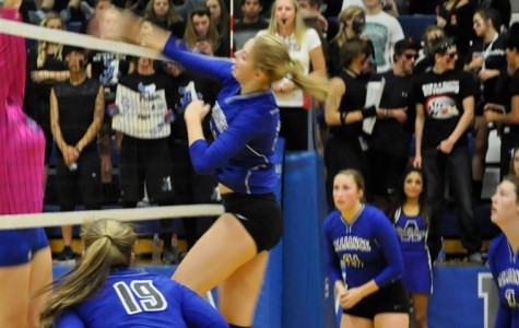 AHS Volleyball Ends Season at Districts