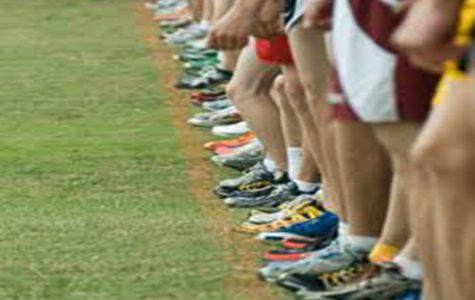 Alliance X-Country Districts