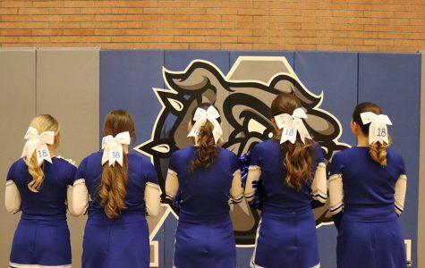 AHS Senior Cheerleaders: A Farewell