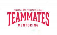 The Teammates Program