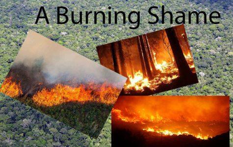 A Burning Shame