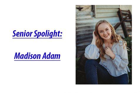 Senior Spotlight: Colter Mann