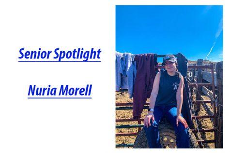 Senior Spotlight: Nuria Morell