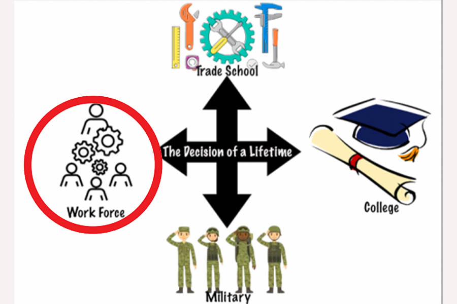 The Decision of a Lifetime: Entering the Workforce Perspective